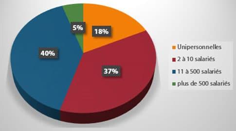 Répartition des membres DCF par taille d'entreprise